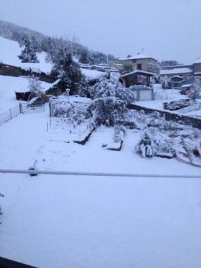 WinterCublize